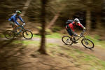Glentress Mountain Bike Trail Centre Pictures
