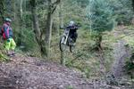 Triscombe Mountain Bike Trails Pictures