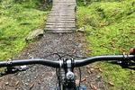 Ae Forest Mountain Bike Trail Centre Pictures