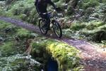 Penmachno Mountain Bike Trails Pictures