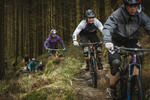 Dyfi Forest Mountain Bike Trails Pictures