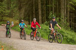 Whinlatter Forest Mountain Bike Trail Centre Pictures