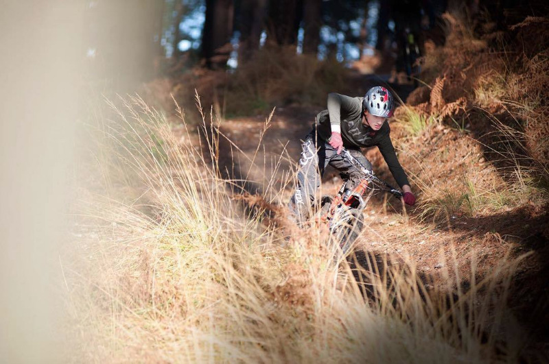 Swinley Mountain Bike Trails