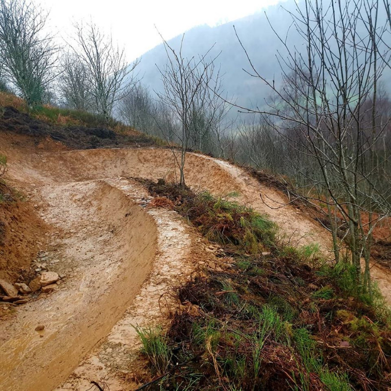Cwmcarn Forest - Mountain Biking