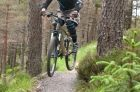 Red Trail - Laggan Wolftrax Pictures