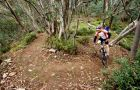 Mount Buller Bike Park - Melbourne