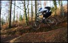 Abbeyford Woods -