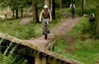 Ae Forest Mountain Bike Trail Centre -
