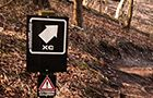 Aston Hill Cross-Country Trail -