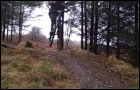 Cwm Rhaeadr Mountain Bike Trail