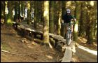 The Black Trail - Glentress