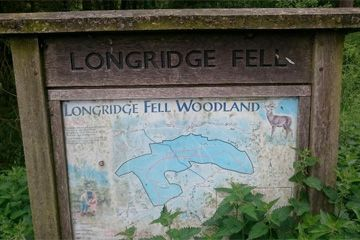 Longridge Fell Mountain Bike Trails