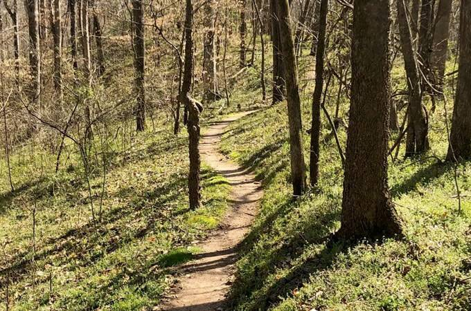 Angler's Park Mountain Biking Trails -