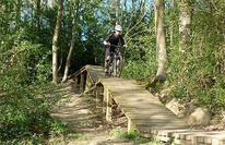 Chopwell Woods Mountain Bike Trails