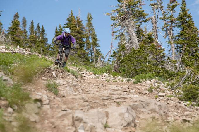 Grand Targhee Bike Park -