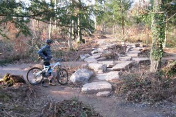 Leigh Woods Mountain Bike Trails