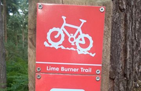Lime Burner Trail - Thetford Forest