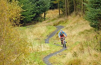 Mabie Forest Mountain Bike Centre