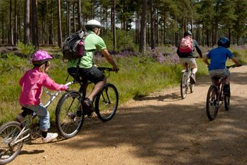 Salcey Forest Cycle Trail