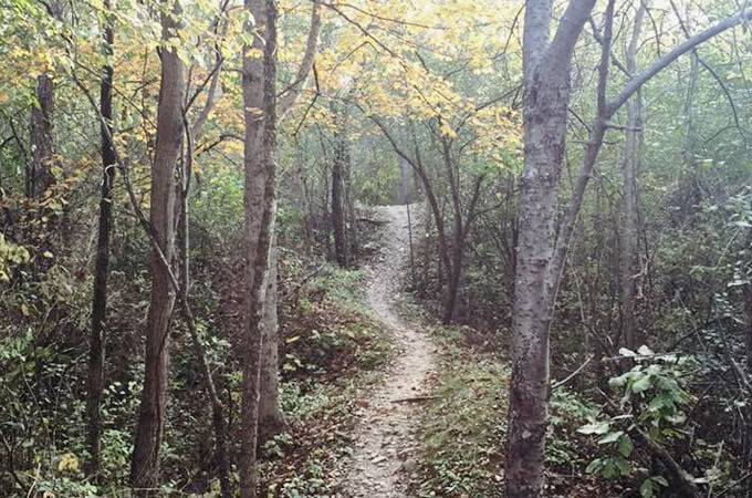 Saw Wee Kee Park Mountain Biking Trails -