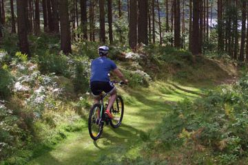 Swinton Bivouac Mountain Bike Trails - Yorkshire & Humberside