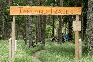 Tarland Mountain Bike Trails