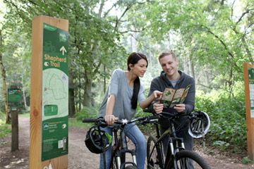 Thetford Forest Mountain Bike Trails - East of England