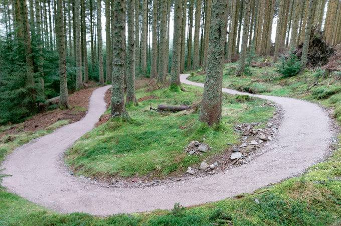 Whinlatter Forest Mountain Bike Trail Centre - Cumbria & Lancashire