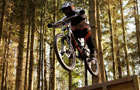 Downhill Trails - Forest of Dean