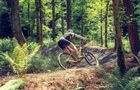 Garvagh Forest Mountain Bike Trails