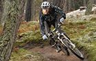 Glentress Mountain Bike Trail Centre