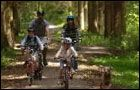 Hamsterley Forest - Blue Trail