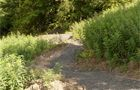 Middleden Mountain Bike Trails