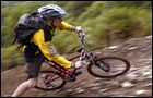 Phoenix Trail - Mabie Forest -