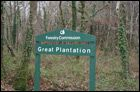 Great Plantation