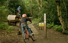 Powerline Trail - Chopwell -