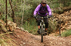 Son Borras Downhill Trail