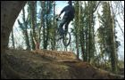 Swindon Trails