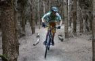 Beater Trail - Thetford Forest -