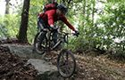 Tollymore Forest Mountain Bike Trails