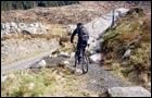 Bargaly Wood Trail - Kirroughtree -
