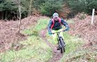 Triscombe Mountain Bike Trails