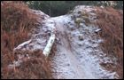 Tunstall Forest - Viking Trail