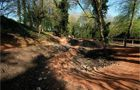 Woodchester Mountain Bike Trails